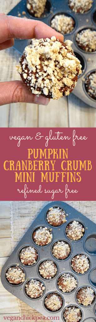 Pumpkin Cranberry Crumb Mini Muffins (Vegan & Gluten Free) - a super moist and bite sized treat, perfect for adults and kids alike! {refined sugar free}