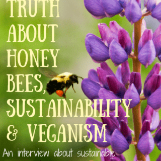 The surprising truth about honey bees, sustainability and veganism: An interview about sustainable beekeeping and why you should care about the honey bee and your food choices - vegan or not! | veganchickpea.com