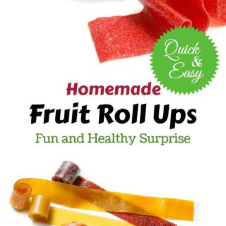 Homemade Fruit Roll Ups